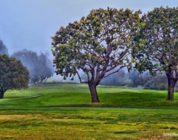 Photo of West Palos Verdes